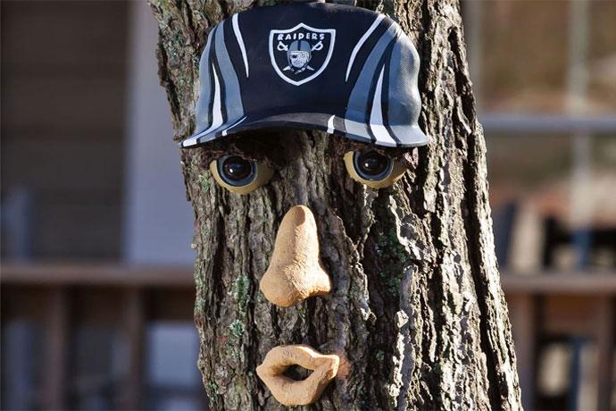 Bonus Gift:NFL Forest Faces, $22.99 Terrify visitors a