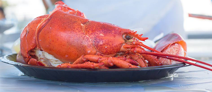Celebrate Fall Seaside at Redondo Beach Lobster Festival, Sept. 23-24