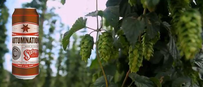 Autumnation: Hops Meet Pumpkin in Sixpoint's First Seasonal Can