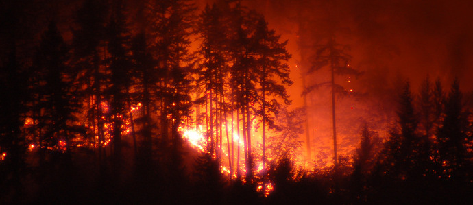 California Wildfires Burn 150,000 Acres, Majorly Affecting Vineyards Throughout Wine Country
